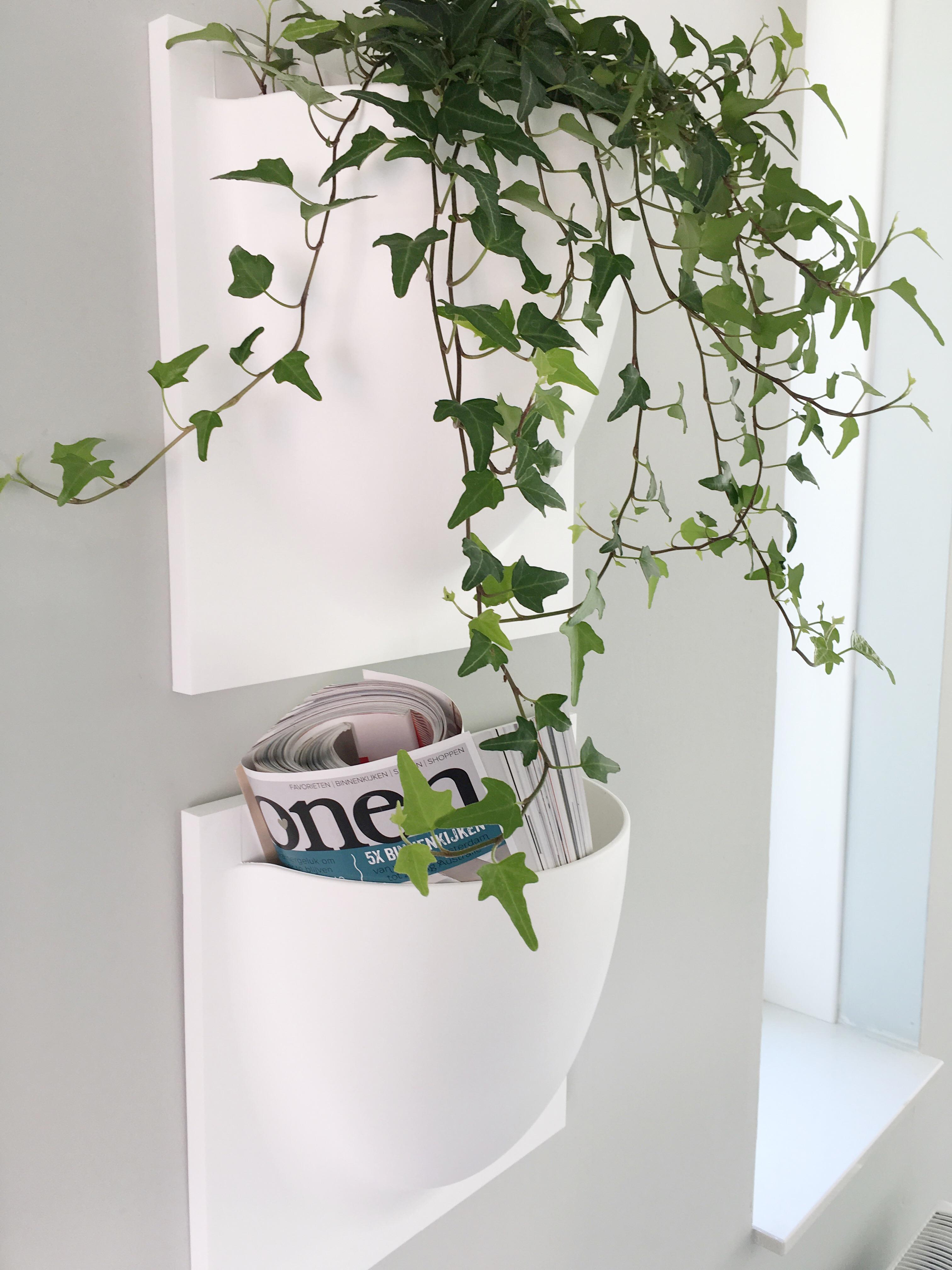 Een groene muur – stijlinge